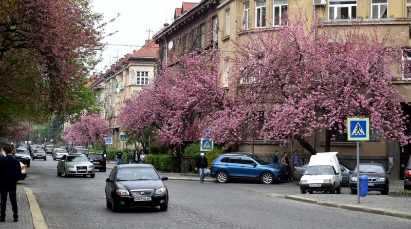 Весяний Ужгород. ФОТО