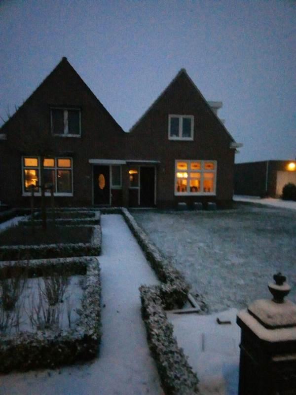 Хустянка про життя заробітчан у Голландії