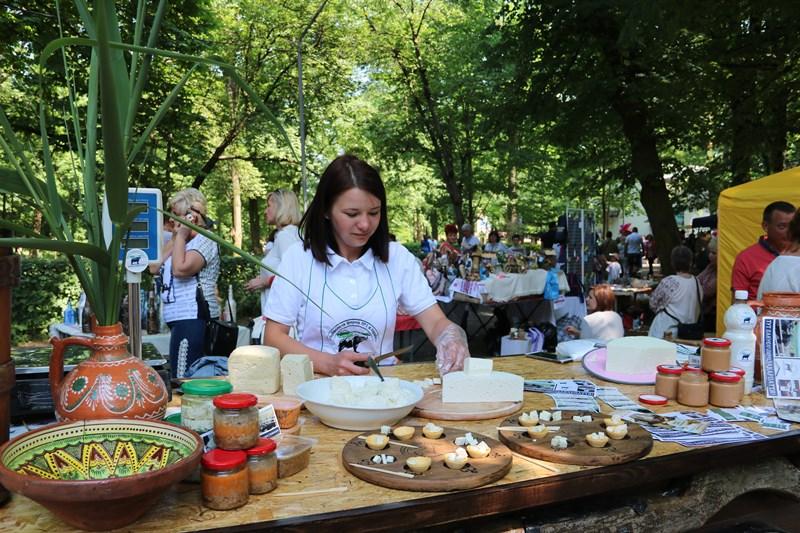 Буйволяче молоко та екологічні сири – родзинка Виноградівщини